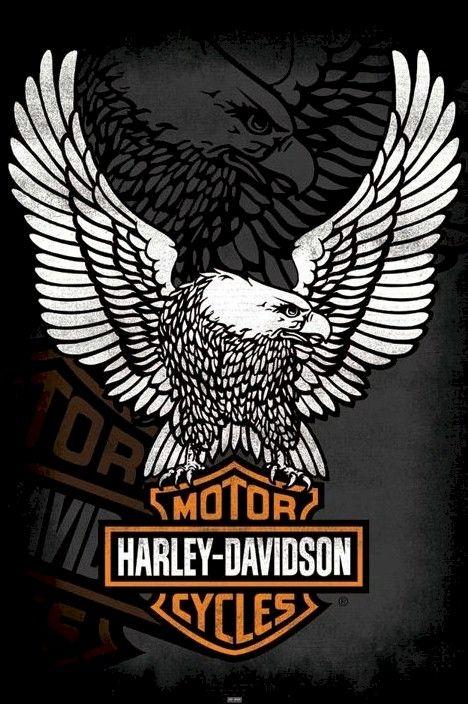 harley-davidson logo - Google Search …   Pinteres…