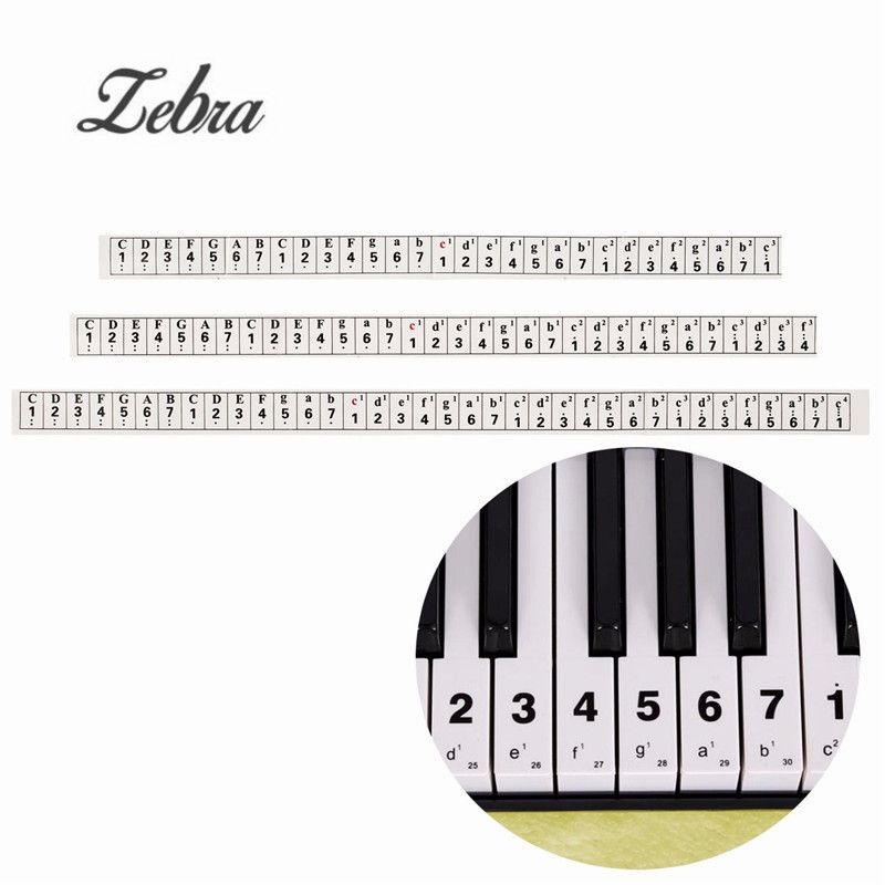 Transparent Electronic Music Keyboard Piano Organ Note Stickers For 49 54 Keys Learner Biginners Practice Piano Keyboard Decal Music Keyboard Keyboard Stickers