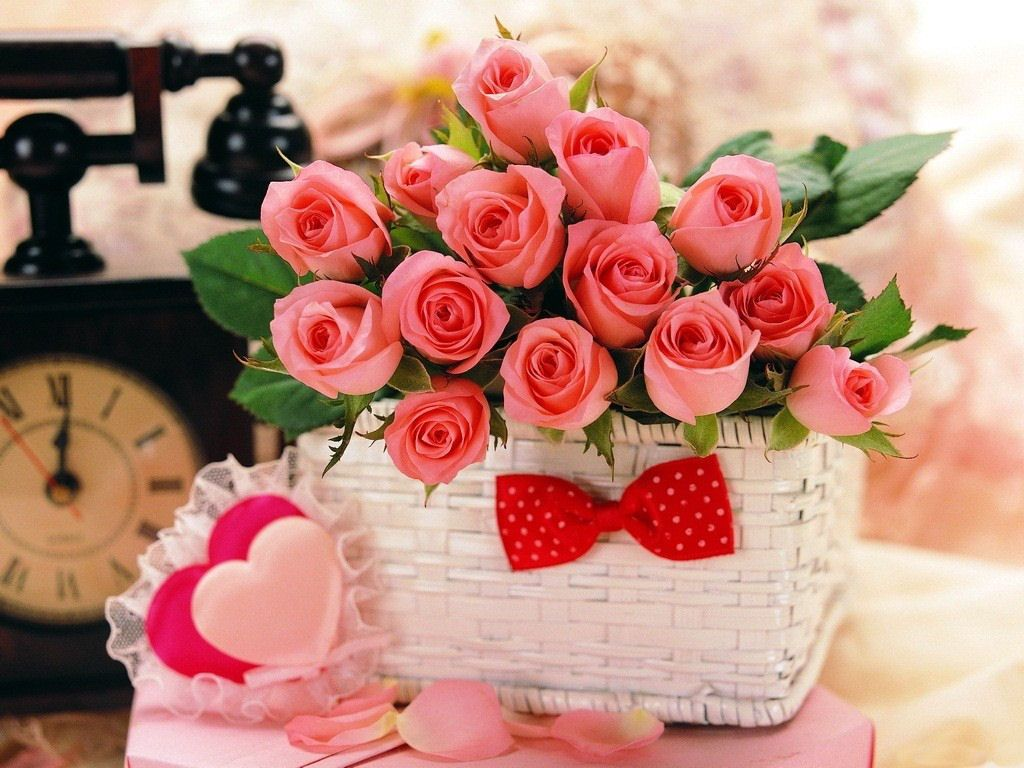 Red roses most popular rose rose wallpapers beautiful rose red red roses most popular rose rose wallpapers beautiful rose red 610 dhlflorist Image collections