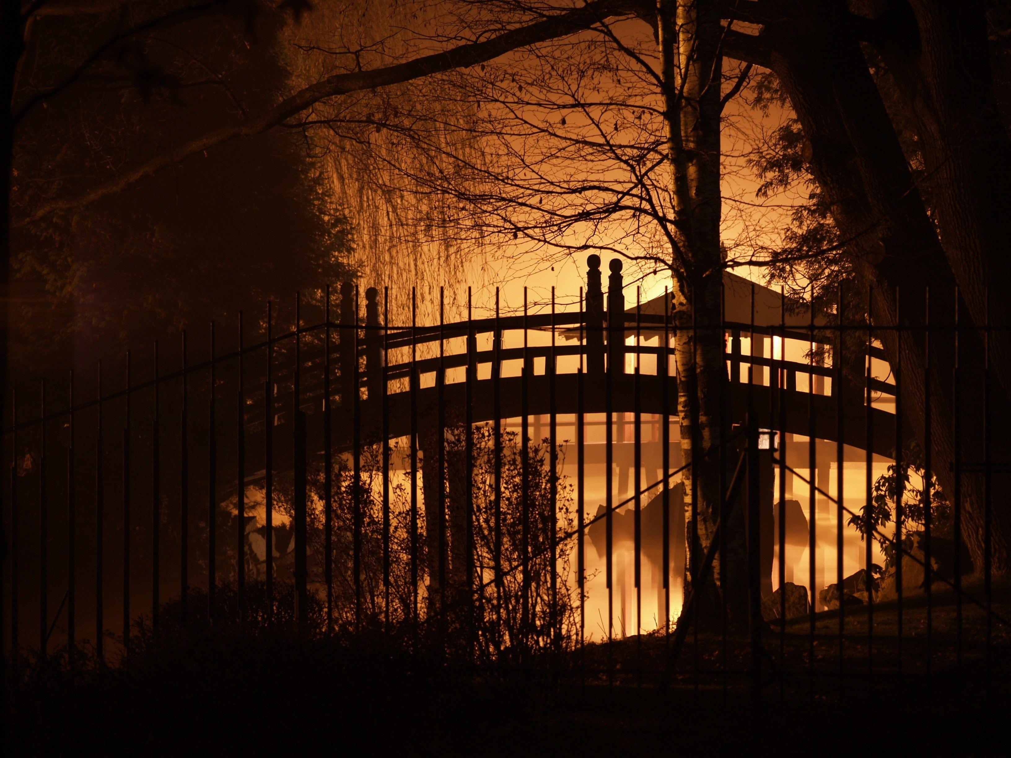 Japanese Gardens At Night