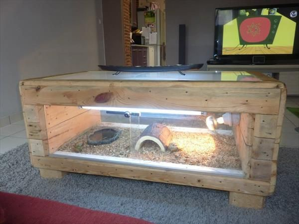 recycled pallet table basse terrarium diy pallet table. Black Bedroom Furniture Sets. Home Design Ideas