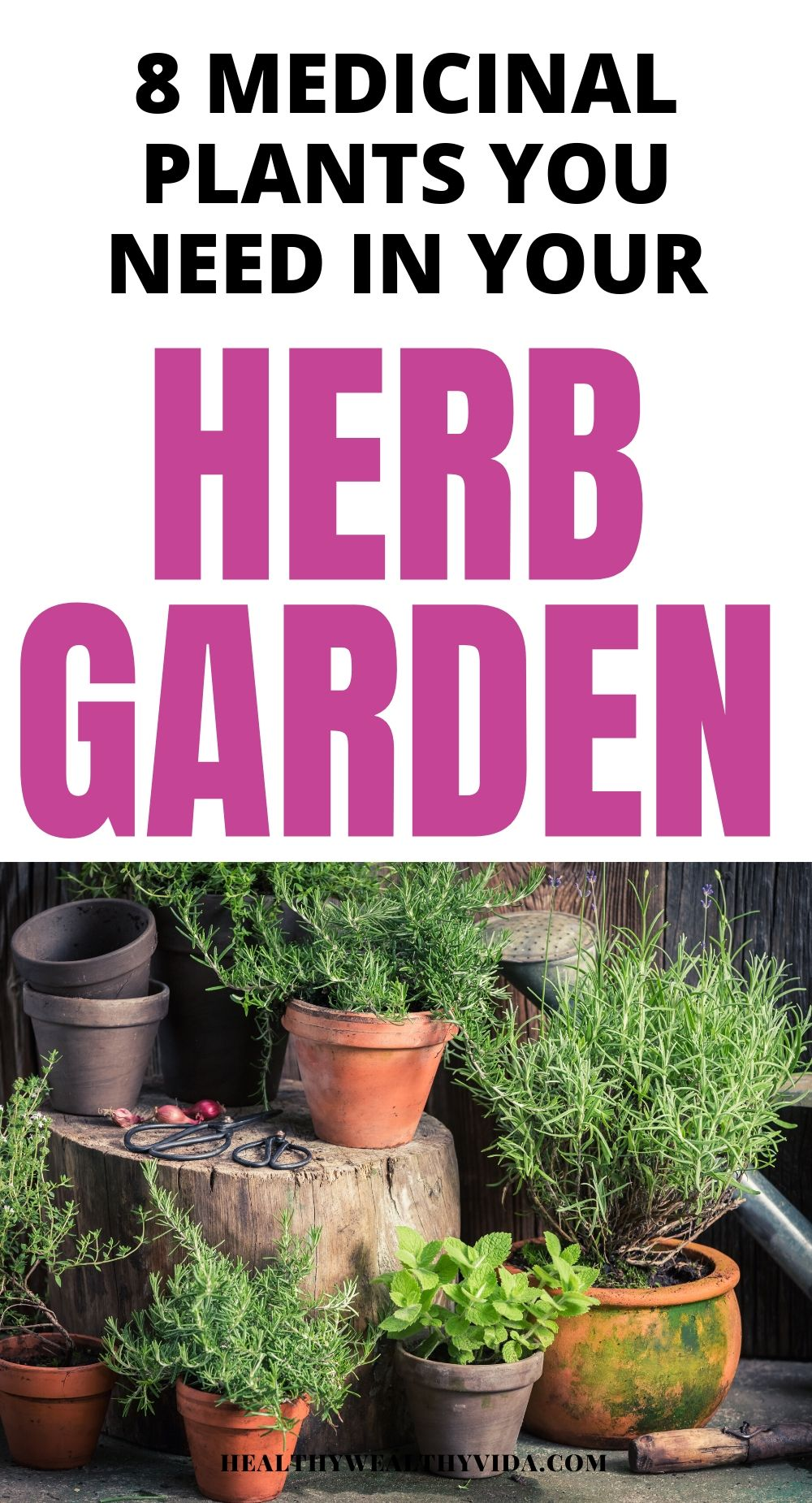 8 Medicinal Plants For Your Outdoor Herb Garden