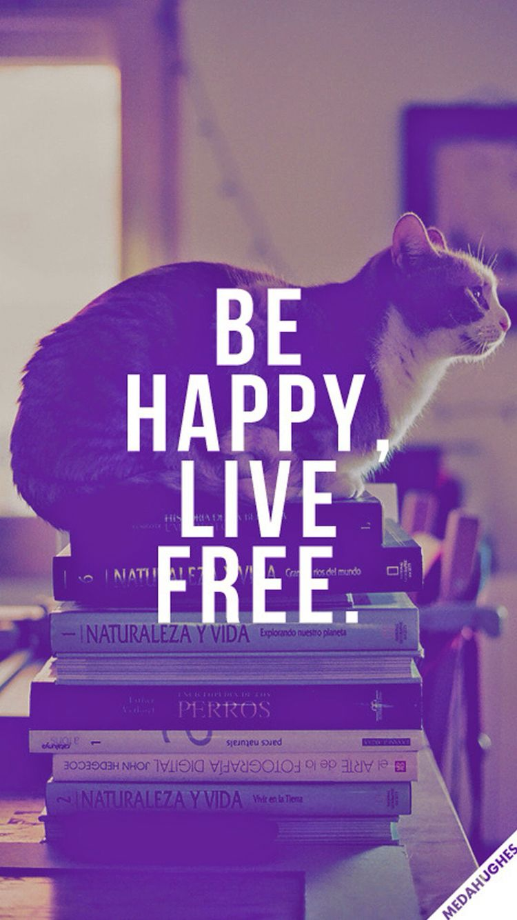 Good Quotes About Happiness Happiness Is A Good Thing Nifty Quotes  Pinterest  Happiness