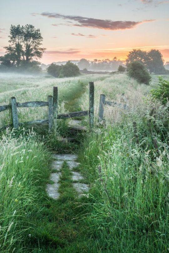 Secret Path .... Photo by Matt Gibson ....