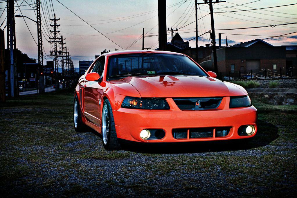 Mustang 03 03 Cobra Mustang