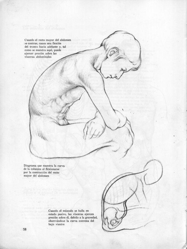 Anatomia-artistica-dibujo-anatomico-de-la-figura-humana | HUMAN ...