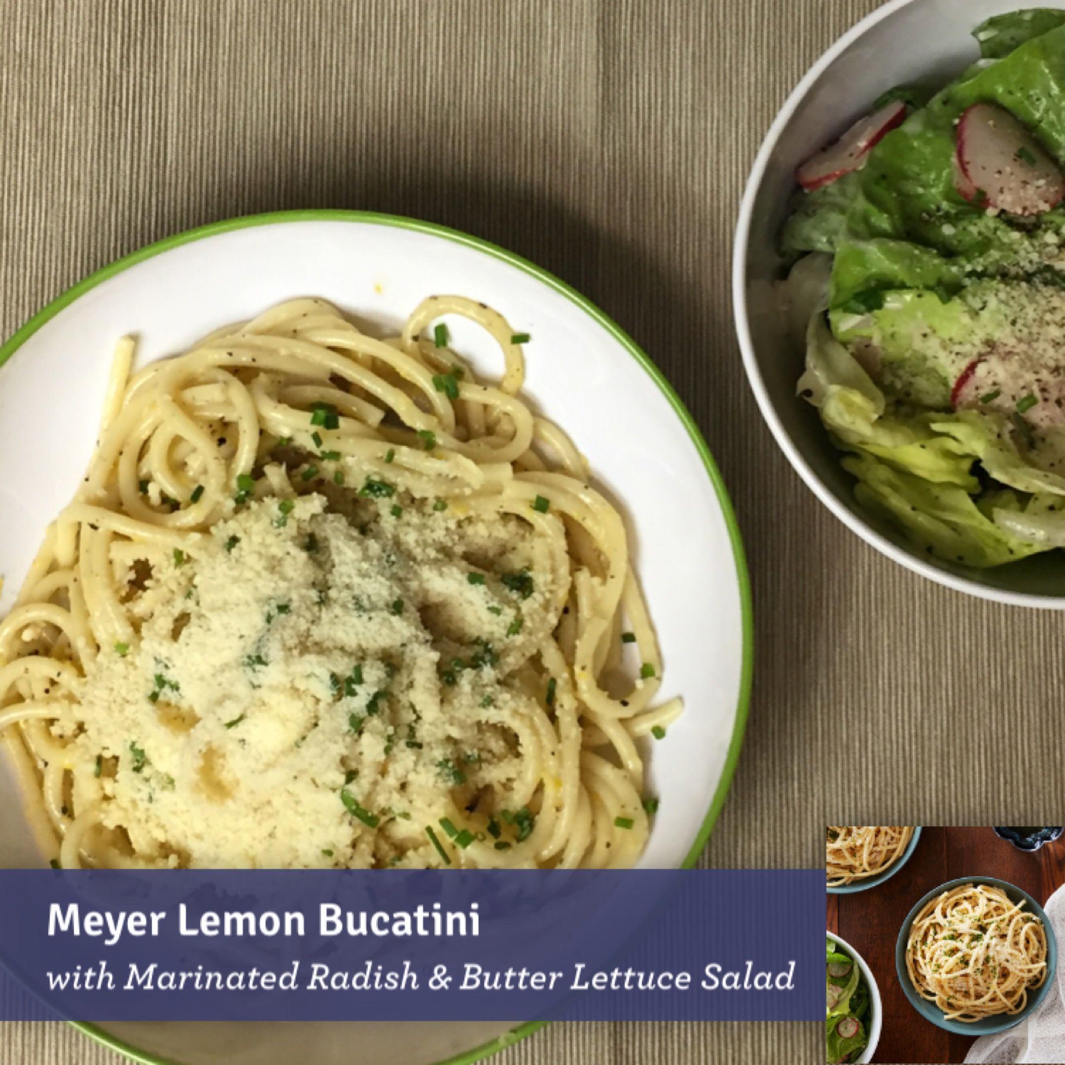 Blue apron bucatini - Meyer Lemon Bucatini With Marinated Radish Butter Lettuce Salad Blueapron
