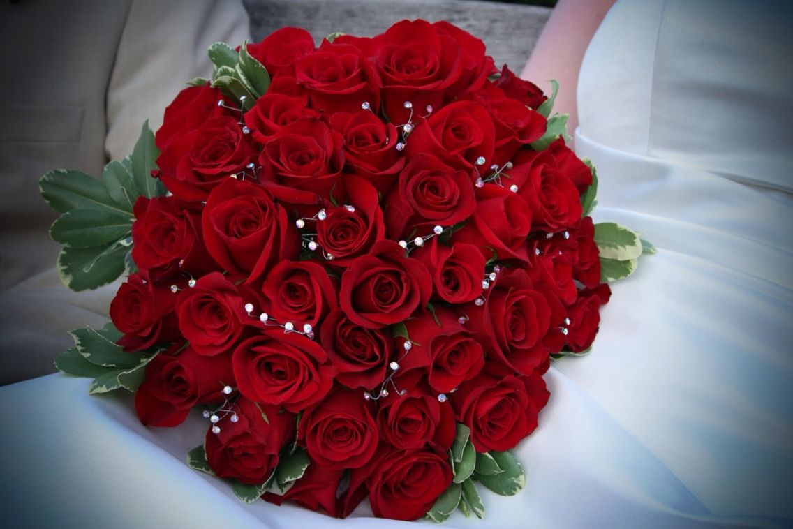 Pin By Neha Adil Mustapha On Flowers Flowers Dp Beautiful Flowers Images Flower Images Free