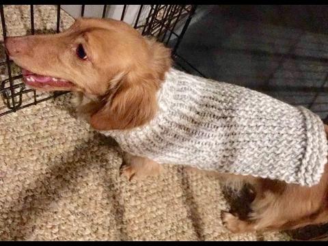 Loom Knit Dog Sweater YouTube | Loom knitting patterns
