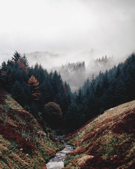Pin By Frogical On Abstract Style Nature Photography Landscape Nature