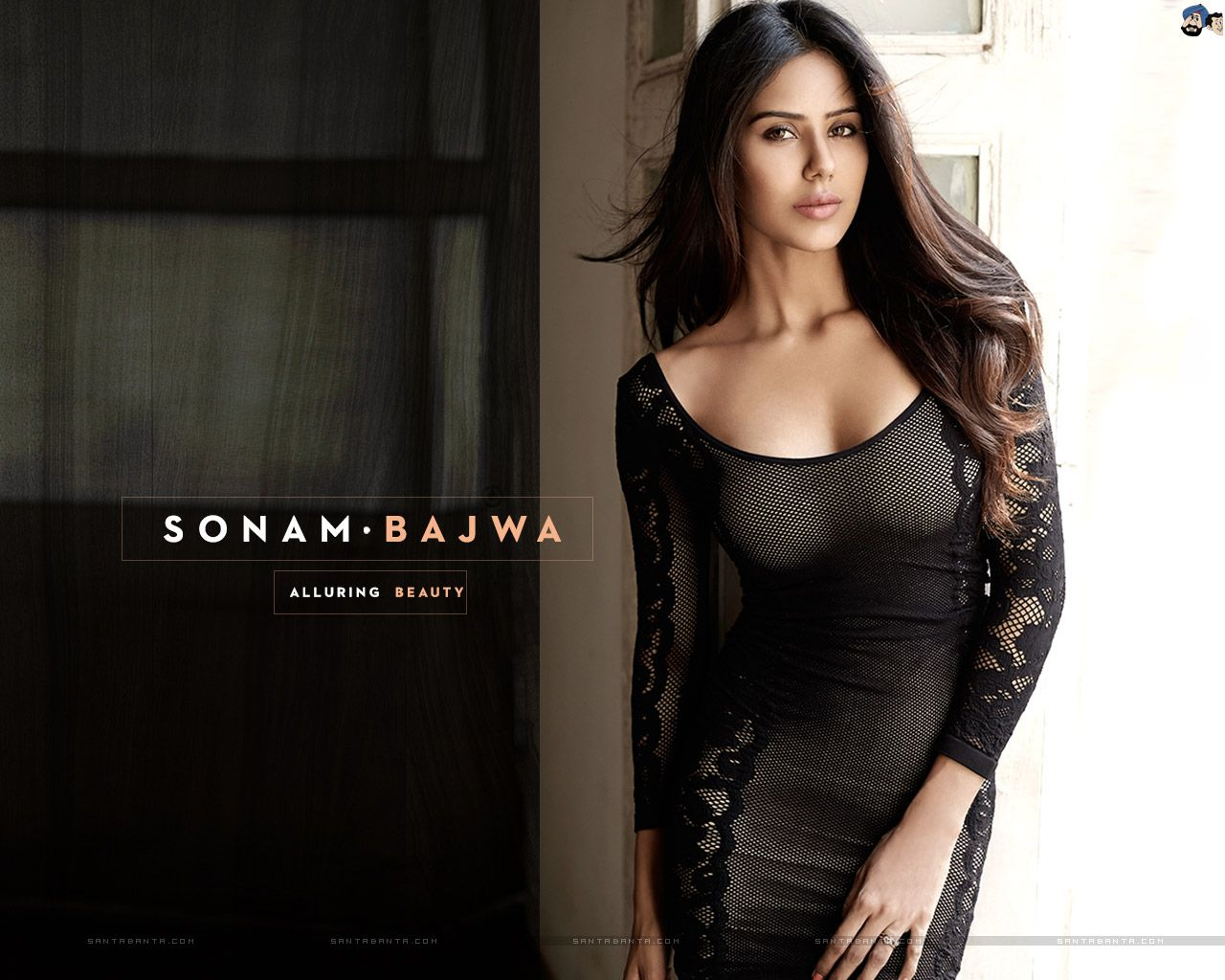 xxx Sonam bajwa