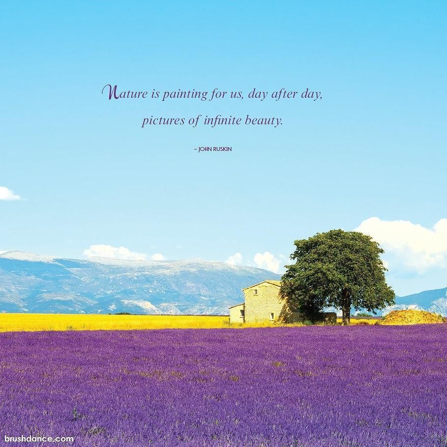 Image from our 2017 Lavender Fields Wall Calendar . .