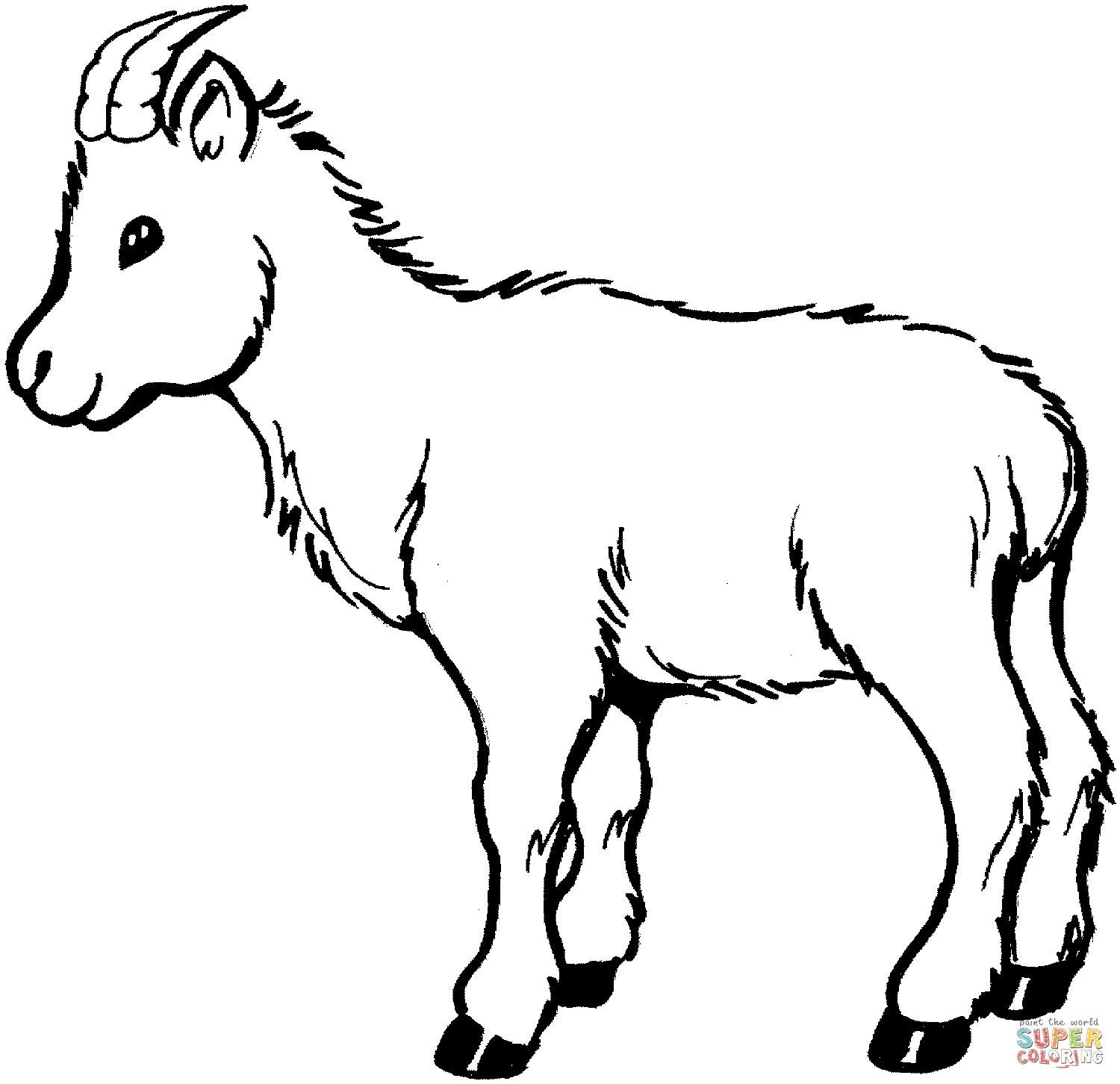 8 Coloring Page Goat Coloring Pages Goat Picture Shape Coloring Pages