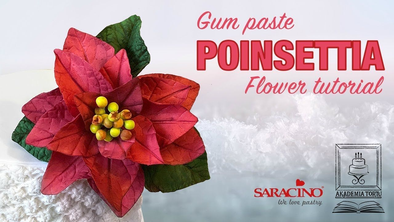 Poinsettia Sugar Paste Flower Tutorial Youtube Sugar Paste Flowers Flower Tutorial Poinsettia