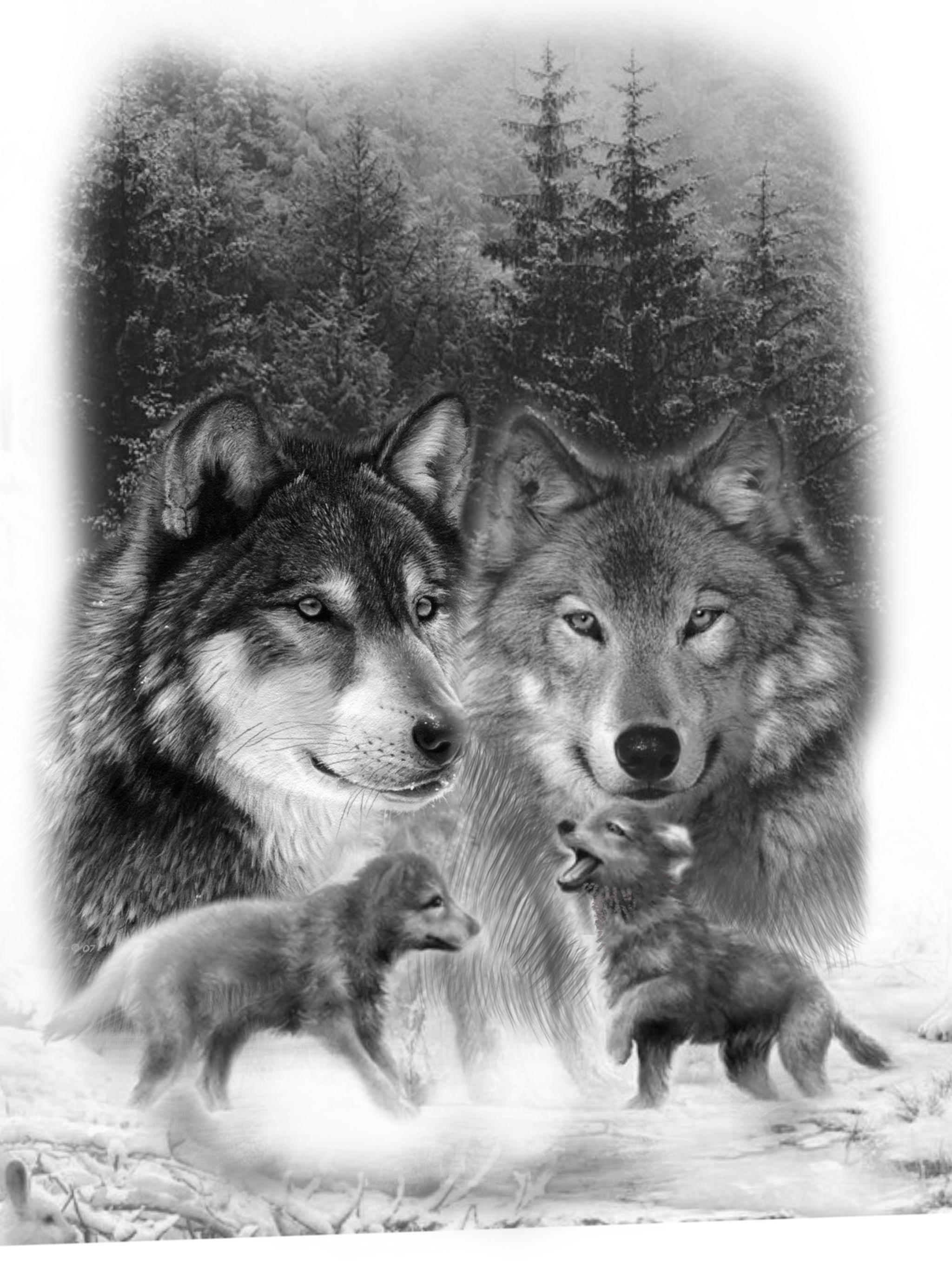 картинки тату волчица с волчатами террасы