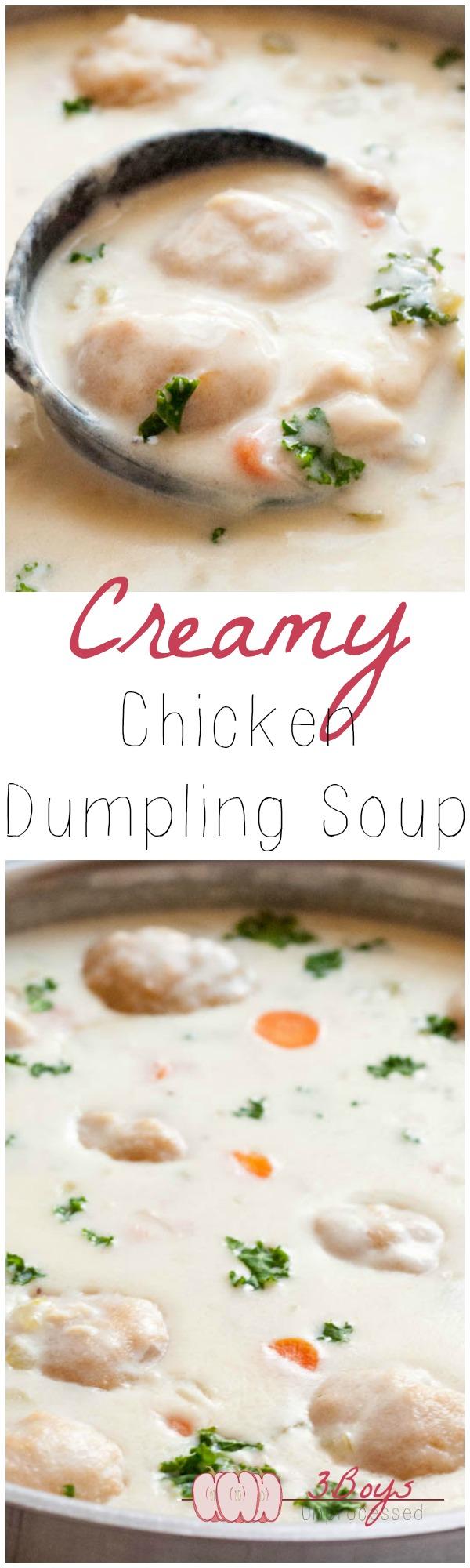 Creamy Chicken and Dumpling Soup – Pretty Little Apron