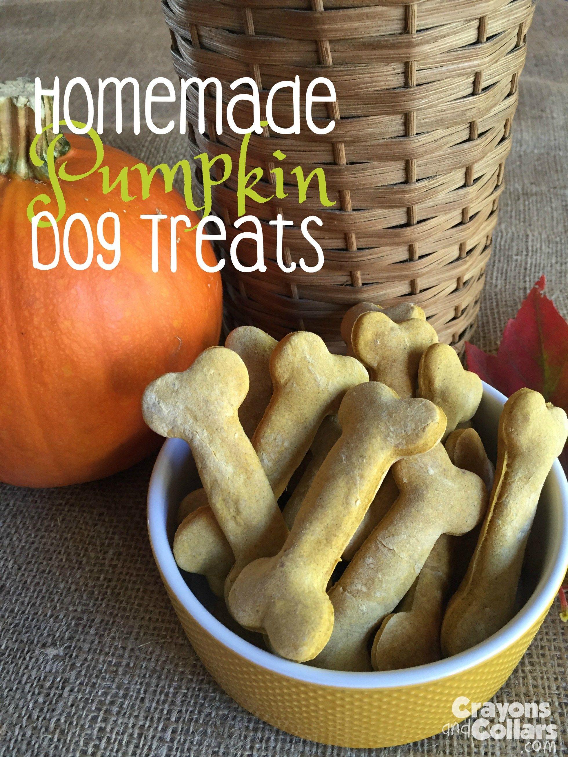 Homemade Pumpkin Dog Treats Dog Food Recipes Pumpkin Dog Treats