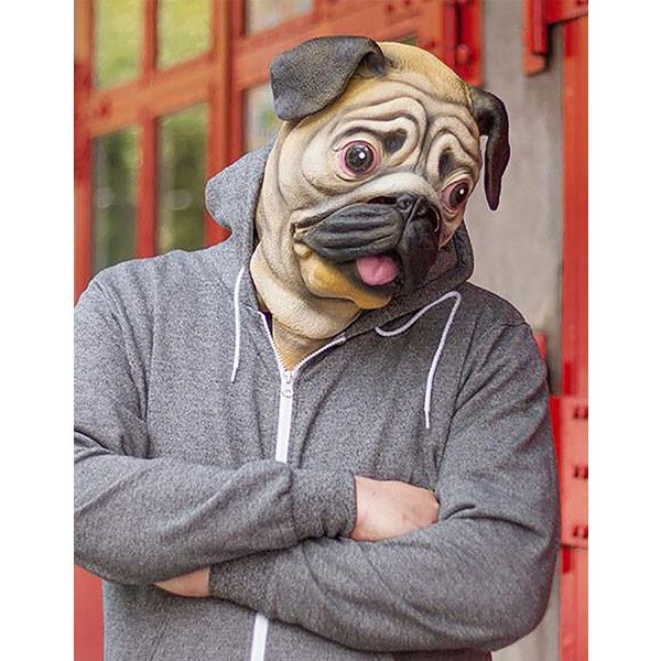 pug mask 35 liked on polyvore featuring costumes adult halloween costumes latex costumes and adult costumes