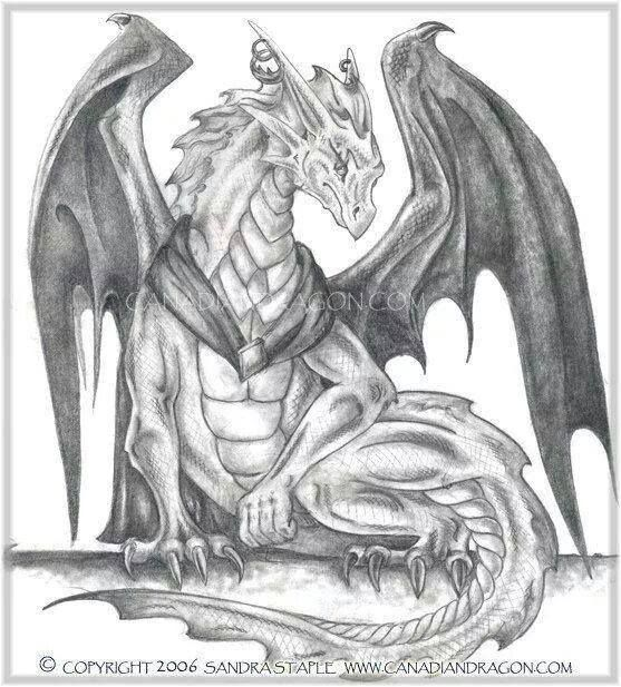 Canadian dragon fantasy art original pencil dragon drawing arb the dragon