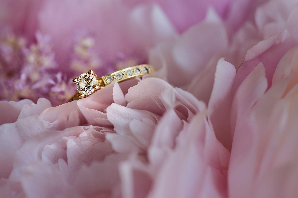 420+WEDDING PHOTOGRAPHER   Wedding Photographer Mariusz Majewski