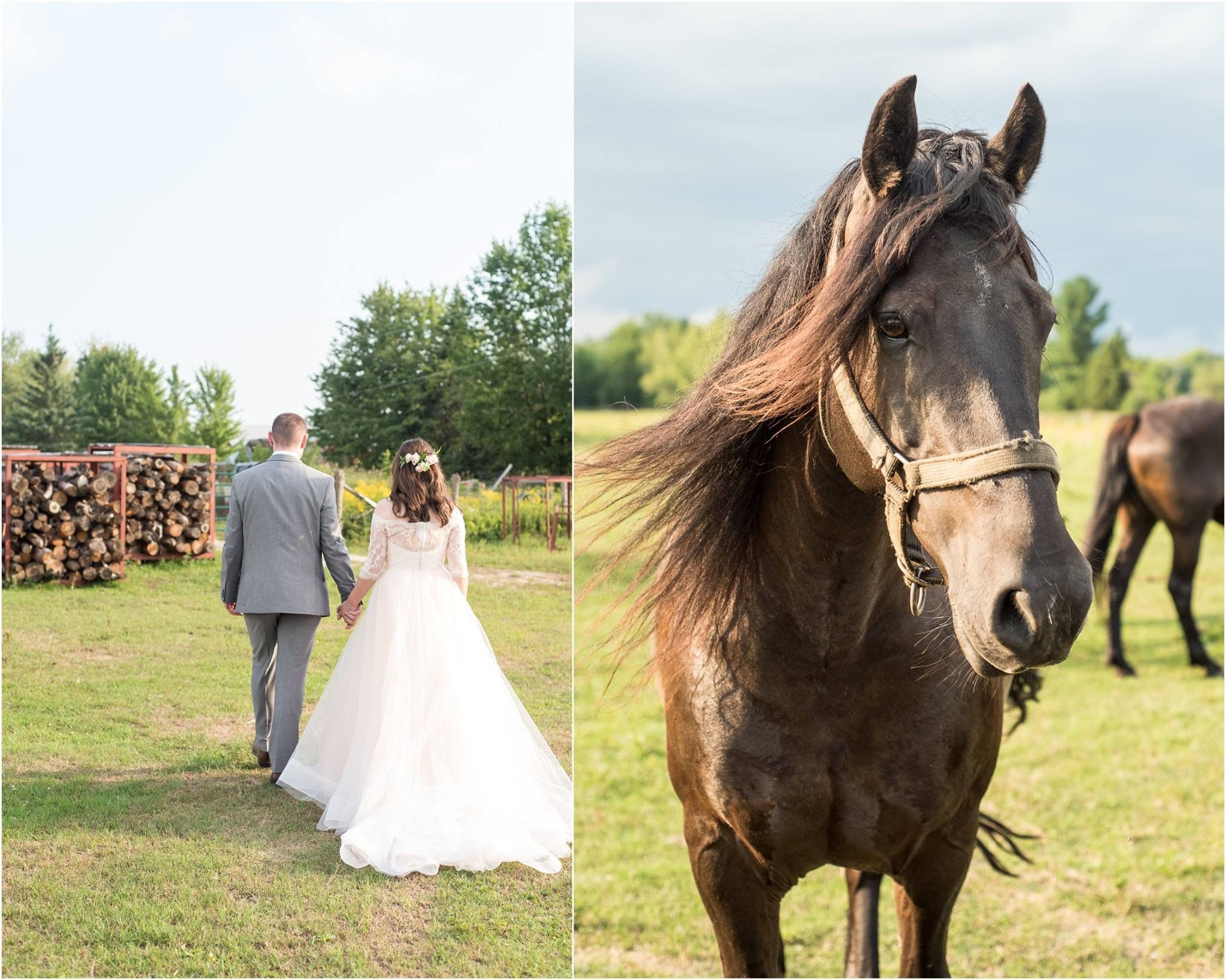Tara keely real bride canadian wedding horse ottawa wedding