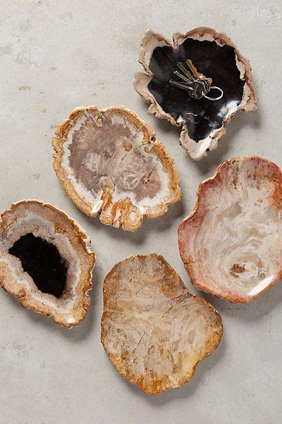 Petrified Wood Tray #anthropologie