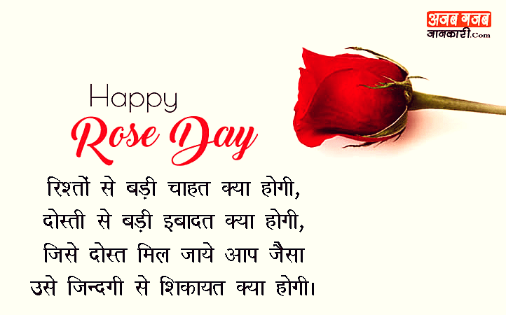 Happy Rose Day Shayari In Hindi 7th Feb Wishes 2019 र ज ड
