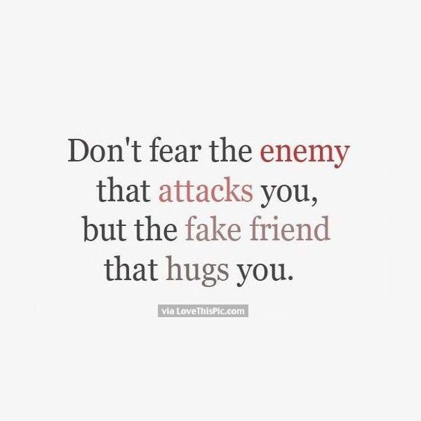 Fear The Fake Friend That Hugs You Friends Quotes Friendship Quotes Funny Quotes