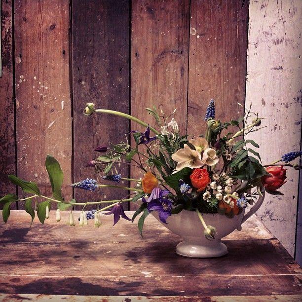 """@joflowers #spring #florist #flowers #shabby"" Photo taken by @joflowers on Instagram, pinned via the InstaPin iOS App! http://www.instapinapp.com (03/31/2013)"