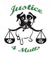 Welcome To Our Newest Member Justice 4 Mutts Animal Rescue
