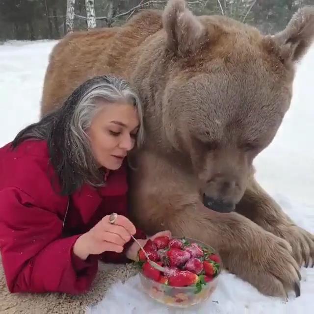 So Sweet Animals Lovers So Sweet Animals Lovers