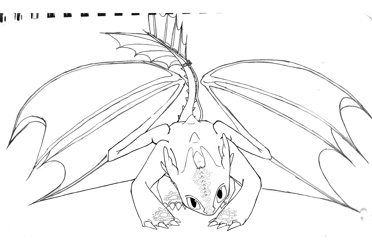 To Train Your Dragon Coloring Pages Toothless And Hiccup How To