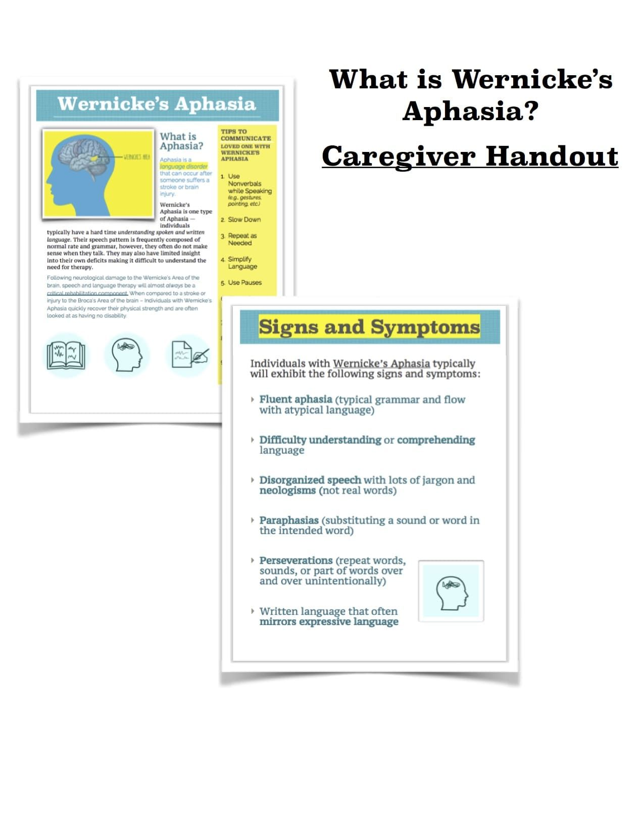 Handout Wernicke S Aphasia