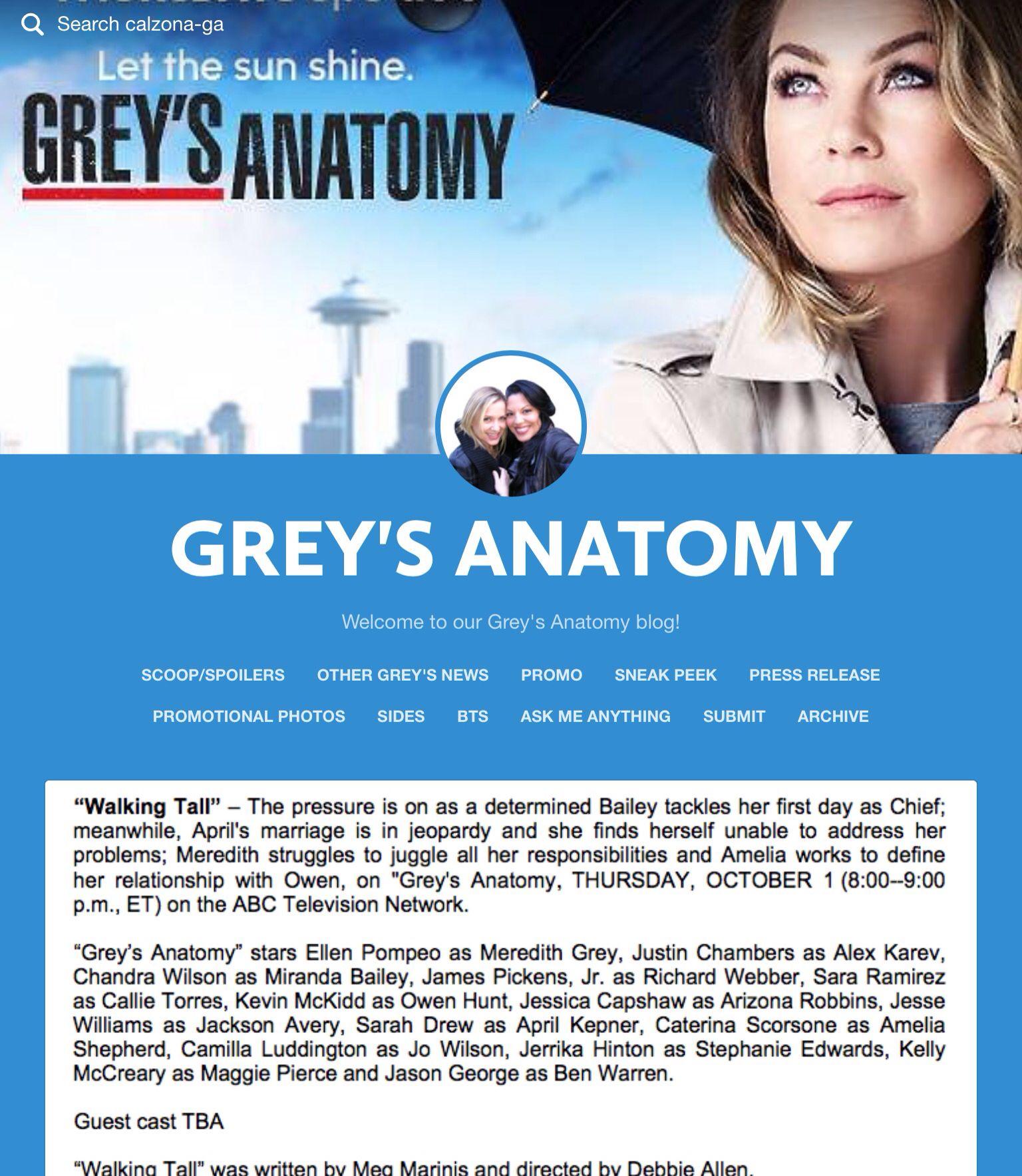 9 best Grey\'s Press Releases Season 12 images on Pinterest | Press ...