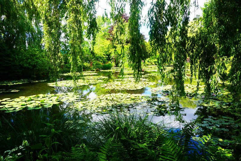 Claude Monet Ein Besuch Am Beruhmten Seerosenteich Monet