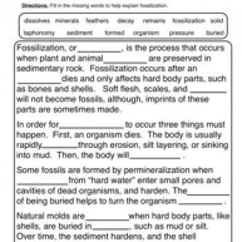 fossils worksheet 1 fossil project science worksheets have fun teaching worksheets. Black Bedroom Furniture Sets. Home Design Ideas