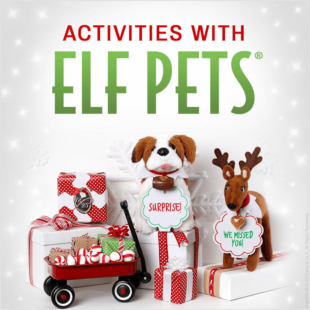 Exciting Activities You Can Do With Your Elf Pets Elf Pets Elf On The Shelf Pet Ideas Christmas Elf