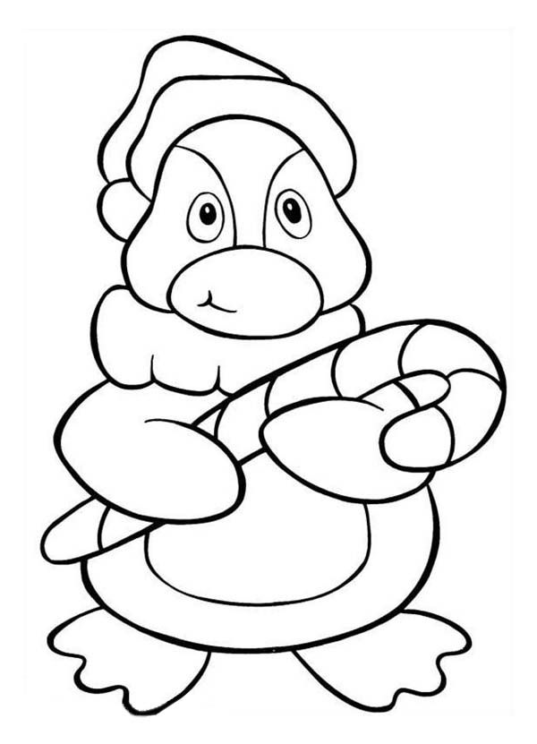 Penguin | Penguin coloring pages, Penguin coloring, Coloring pages | 831x600