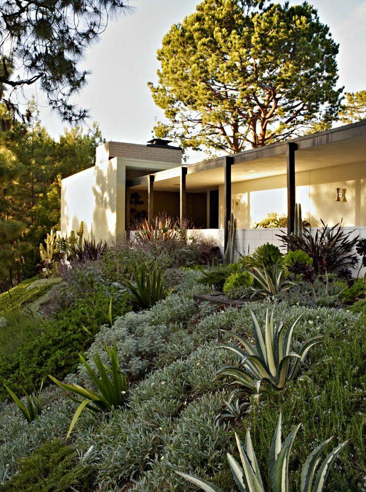 Southern California Hillside Landscaping Mediterranean Garden Design Succulent Landscape Design Contemporary Garden Design
