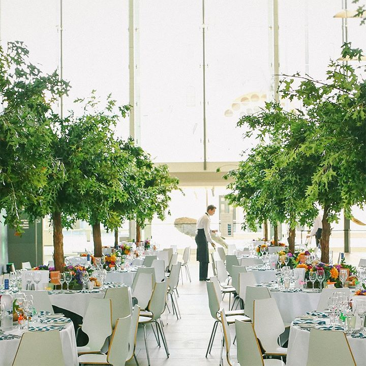 Indoor Wedding Reception Ideas: Indoor Garden Wedding, Garden Wedding