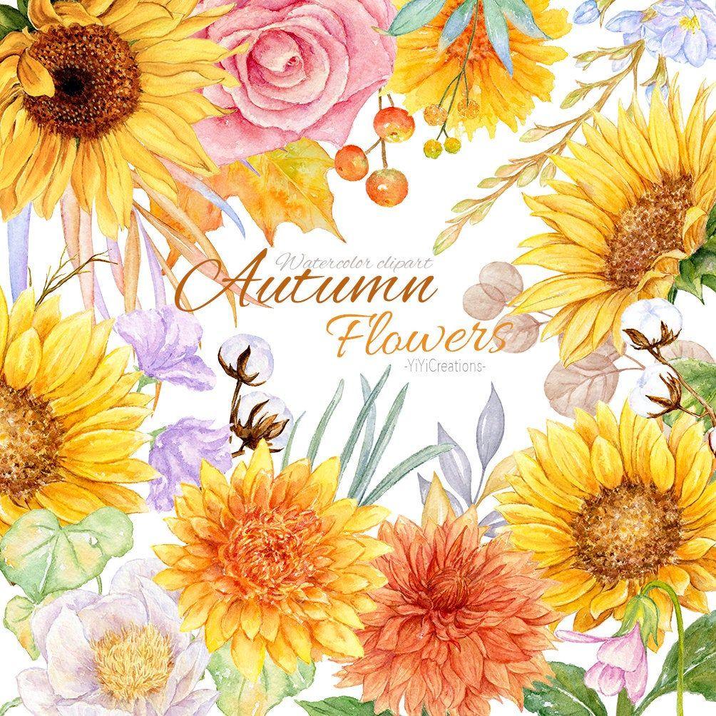 Wild Autumn Flower Clipart, Aquarel Fall Herb Digital ...