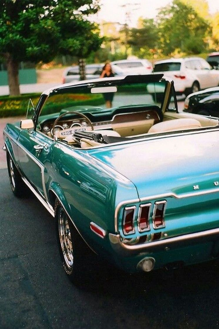 Afternoon Drive - American Muscle Cars (31 Photos) | Muscles and Cars