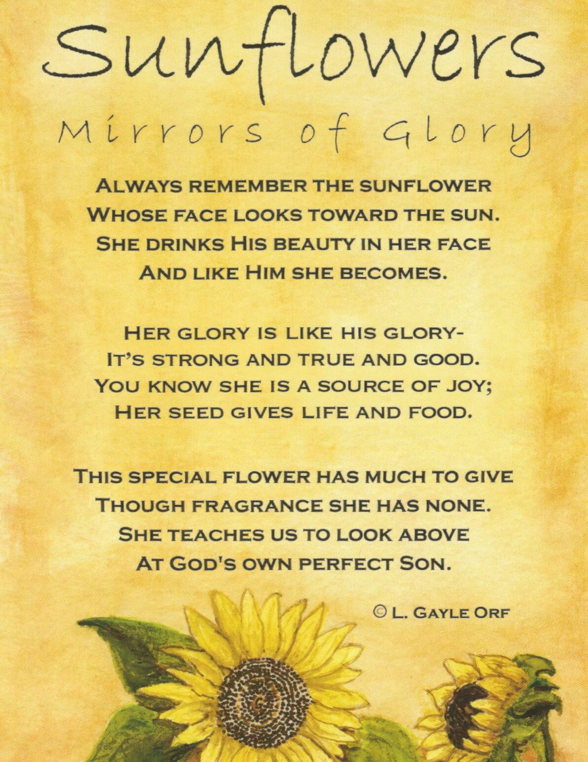Poem Sunflowers Mirrors Of Glory A Poem Pinterest Fleurs