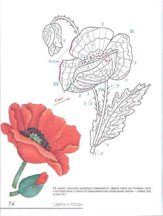 Gallery.ru / Фото #71 - Живописная вышивка гладью. Цветы и ...