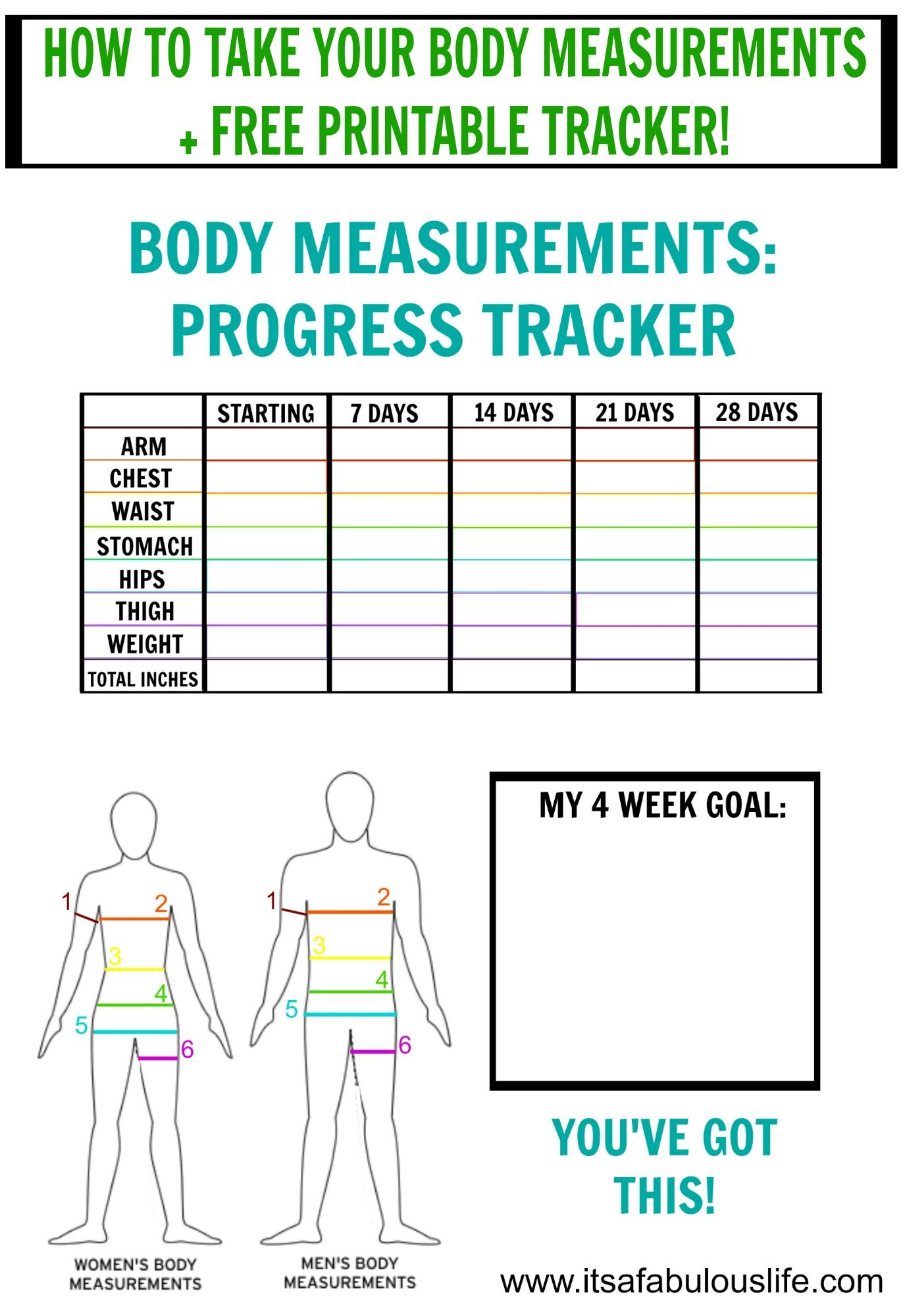 How to take your body measurements free printable tracker also measurement chart weight tracking rh pinterest