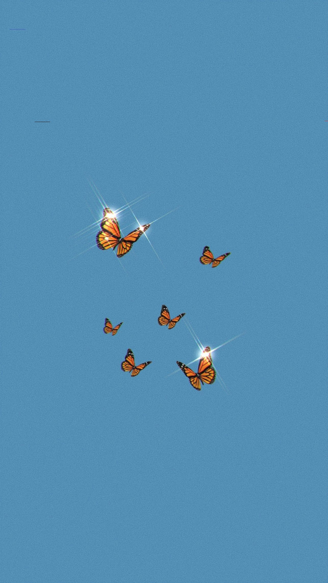 🖤 Aesthetic Butterfly Wallpaper Live - 2021
