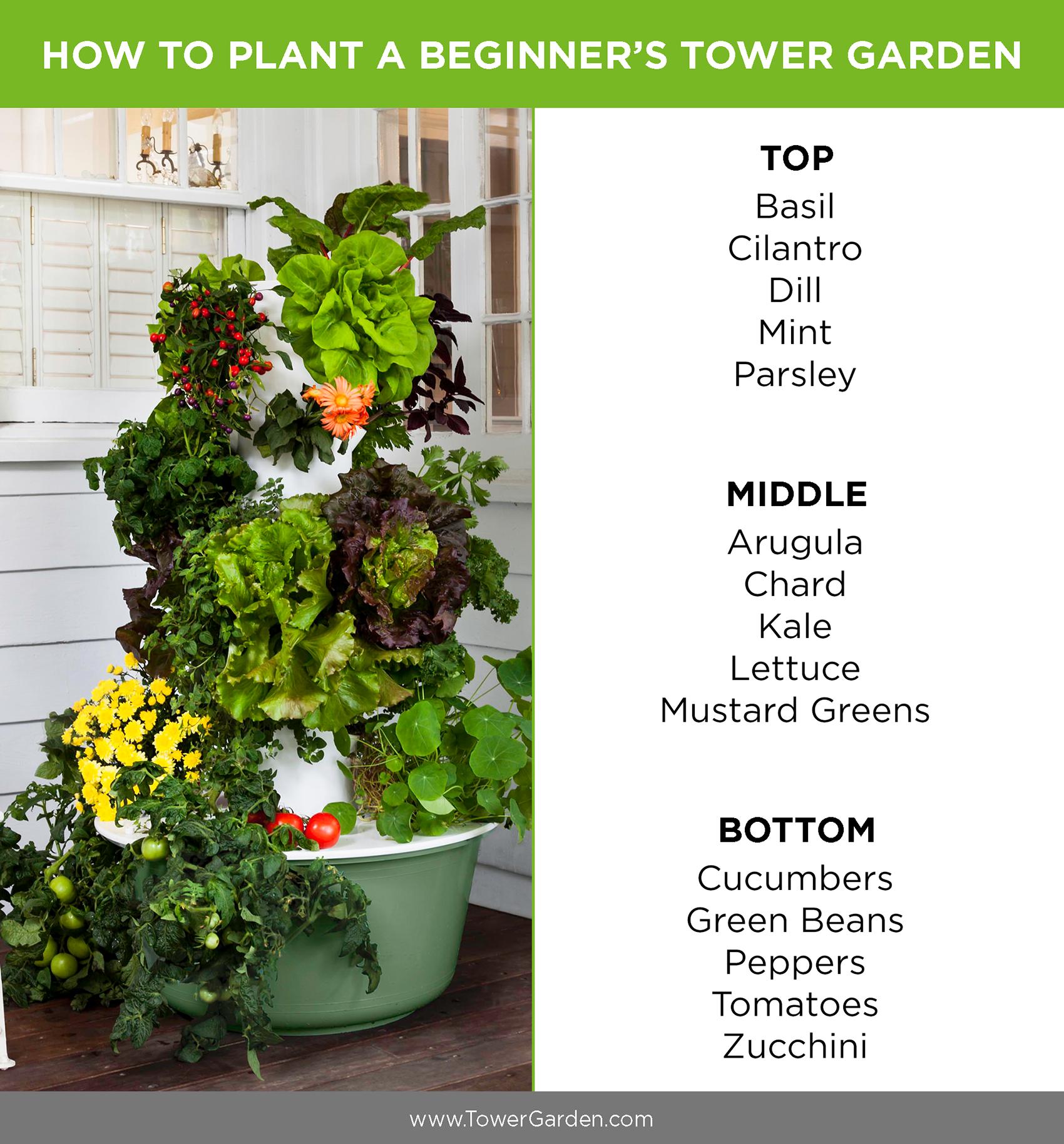 Beginner Tower Garden Planting Plan Tower Garden Juice