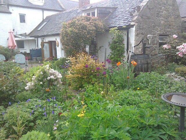 Dorre garden