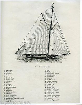 Sloop Yacht Sailing Diagram Vintage Sailboat Drawing Nautical