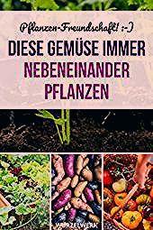 Photo of 28 Gemüsearten und ihre wirksamsten Mischkultur-Partner + Beispielplan: Du frag…